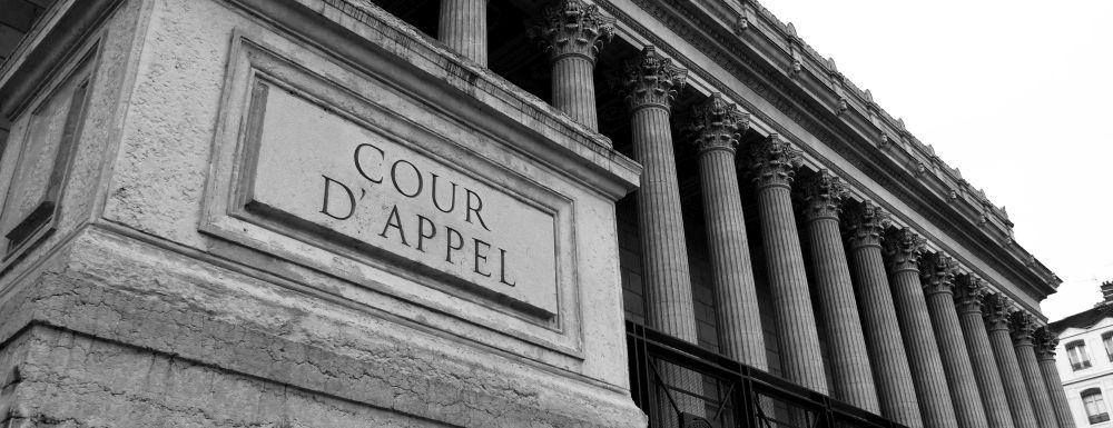 cour appel de lyon philippe favre reguillon expert de justice