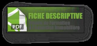 FICHE DESCRIPTIVE DE LA FORMATION DEVENIR EXPERT IMMOBILIER CFEI