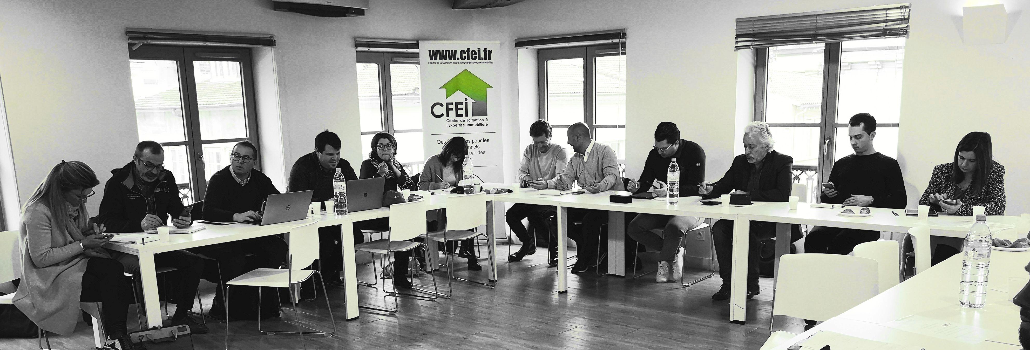 CFEI COMMENT DEVENIR EXPERT IMMOBILIER CHOISISSEZ LE LEADER FRANCOPHONE DE LA FORMATION AUX METHODES D EVALUATION