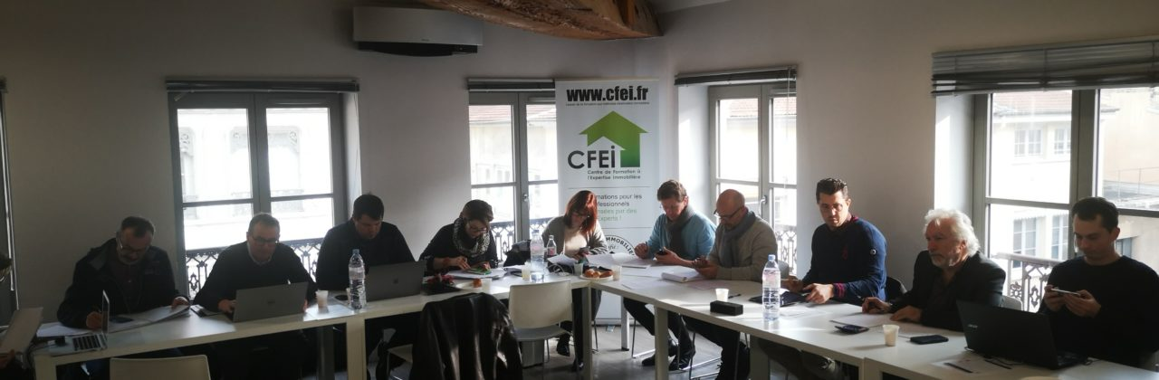 Sessions 01/2020, Niv. I & II, Lyon, Experts certifiés CFEI®