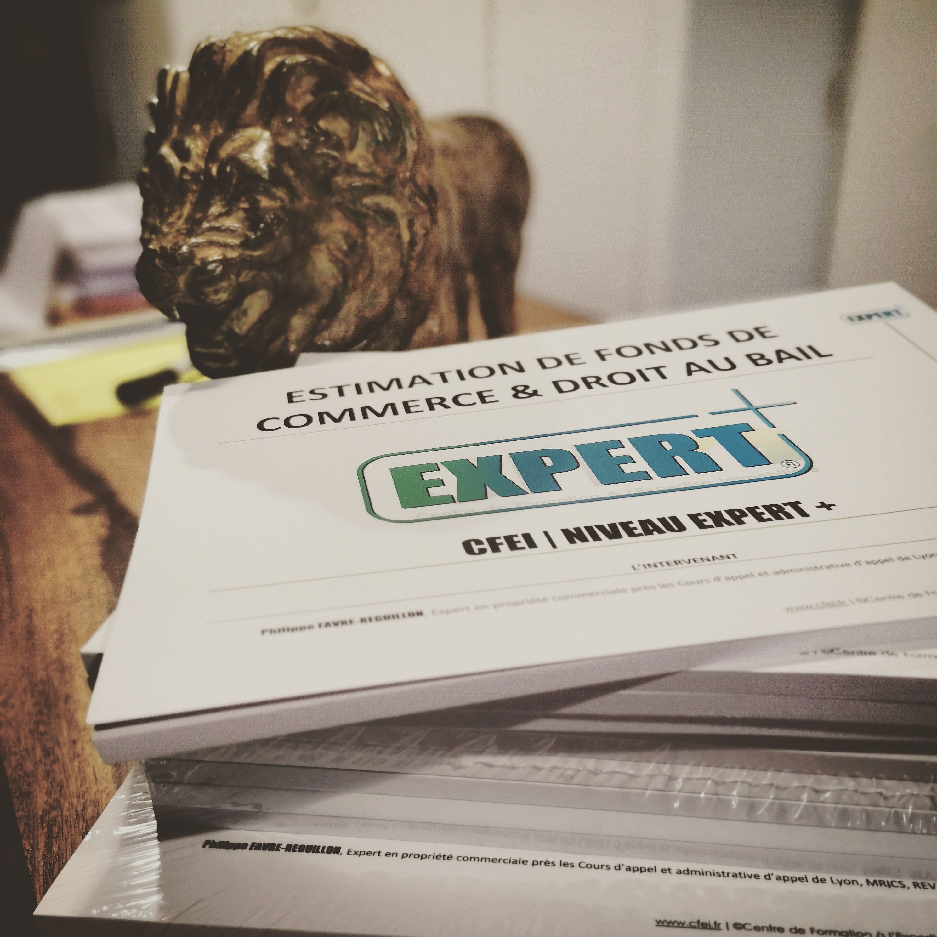 supports_formation_expert_cfei_centre_de_formation_expertise_immobiliere